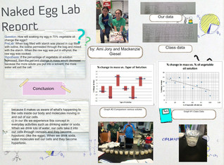 Naked Egg Lab Report