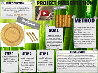 Project presentation Bamboom