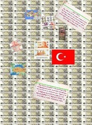 Turkey Money's thumbnail