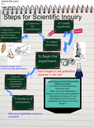 Steps for Scientific Inquiry Steps's thumbnail