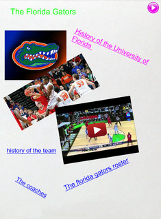 The florida gators by Ethan Muller