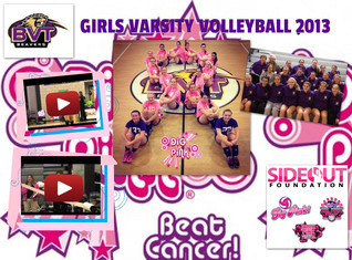 BVT Volleyball Dig Pink