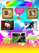 Dogs and me's thumbnail