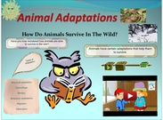 Animal Adaptations's thumbnail