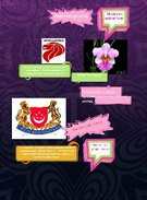 National Symbols of Singapore's thumbnail