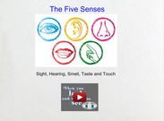 Five Senses's thumbnail