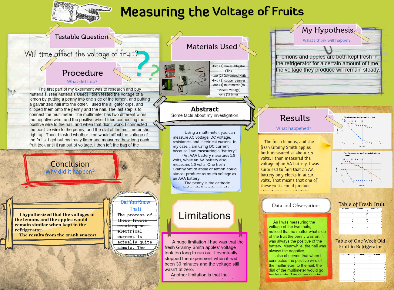 Measuring the Voltage of Fruits