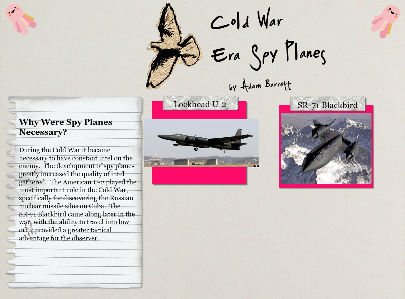 Cold War Spy Planes