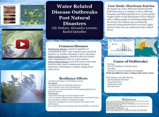 Water related disease outbreaks