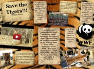 Save The Tigers!'s thumbnail