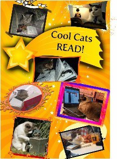Cool Cats Read