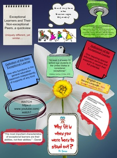 Exceptional vs Non-Exceptional Learners