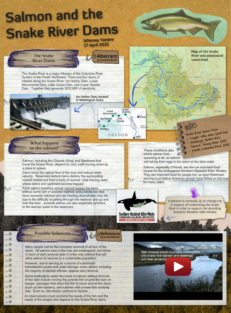 Salmon and the Snake River Dams