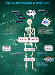 Physical Development of Adolescents