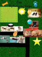 Dog fractions by Bailey and Morgan's thumbnail