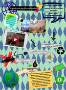 Conciencia medio ambiental's thumbnail