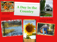 A Day in the Country's thumbnail