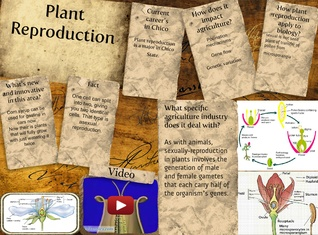 Plant reproductiom