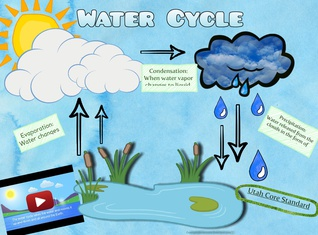 Water Cycle- Courtney Mahoney