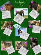 Zoo Animals and the  Sounds They Make' thumbnail