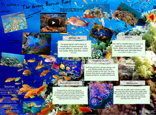 The Great Barier Reef